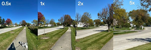 zoom in - point and shoot camera vs smartphone